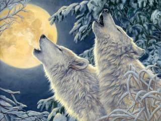 Собирать пазл Волки и луна онлайн