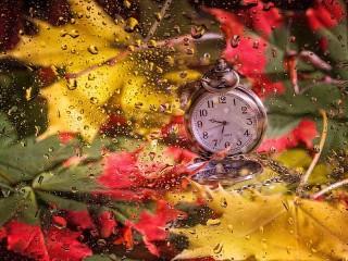 Собирать пазл Время осени онлайн