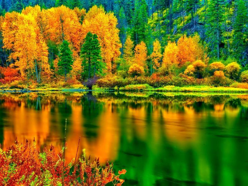 Пазл Собирать пазлы онлайн - Вспомним осень