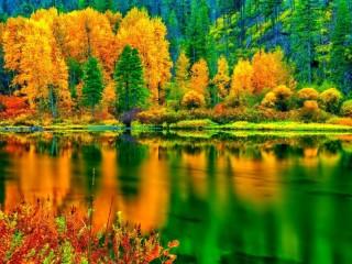 Собирать пазл Вспомним осень онлайн