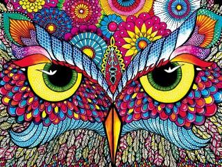 Собирать пазл Взгляд совы онлайн