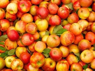 Собирать пазл Яблочное изобилие онлайн