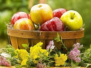 Собирать пазл Яблоки и цветы онлайн