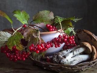 Собирать пазл Ягоды и грибы онлайн