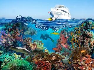 Собирать пазл Яхта и море онлайн