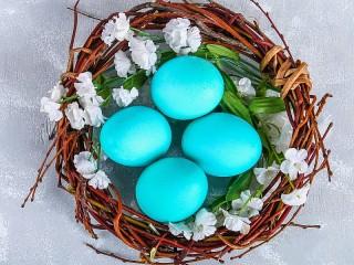 Собирать пазл Яйца в гнезде онлайн
