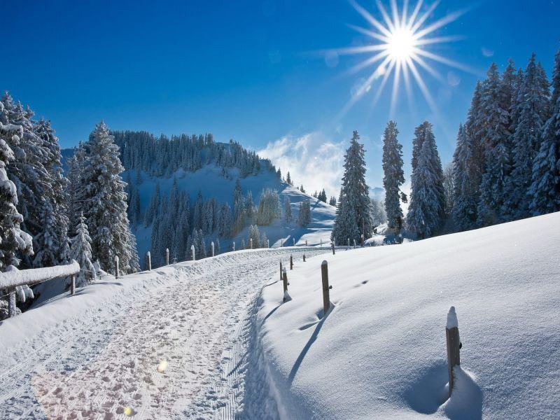 Пазл Собирать пазлы онлайн - Январьский полдень
