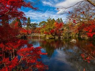 Собирать пазл Японская осень онлайн