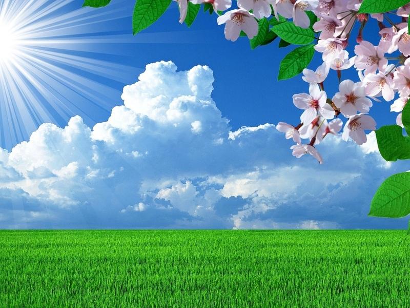 Пазл Собирать пазлы онлайн - Яркая весна