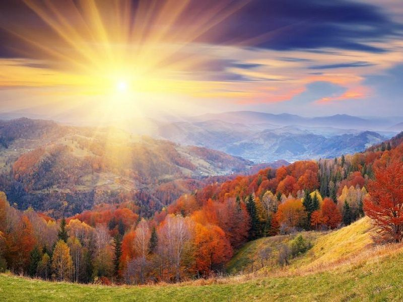 Пазл Собирать пазлы онлайн - Яркие краски осени