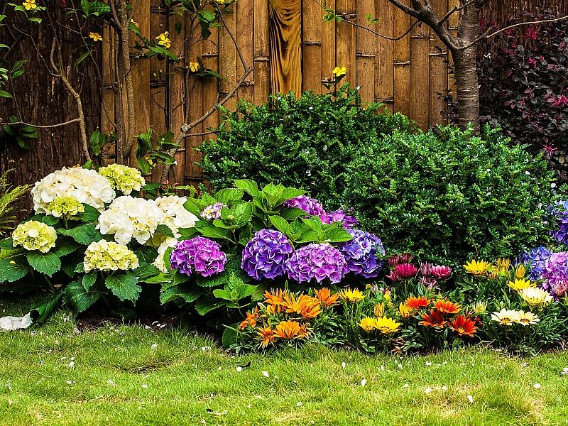 Пазл Собирать пазлы онлайн - Яркие цветы