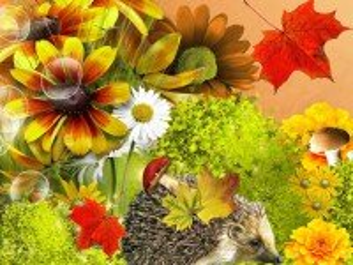 Собирать пазл Ёжик и цветы онлайн