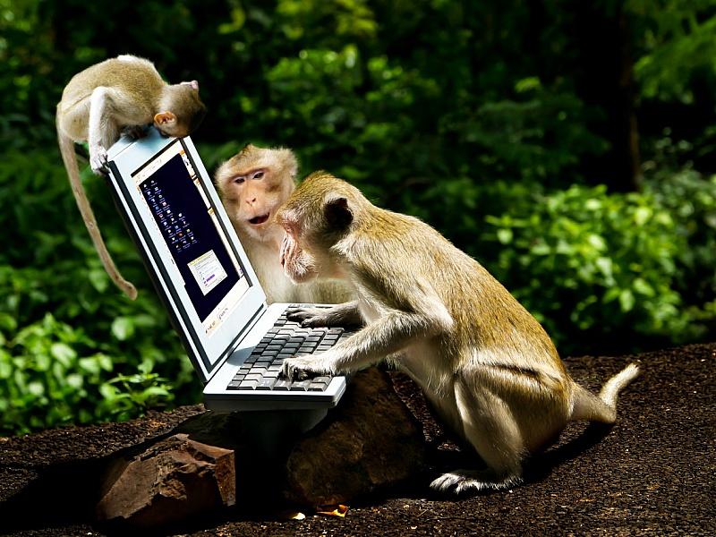 Пазл Собирать пазлы онлайн - Юзеры