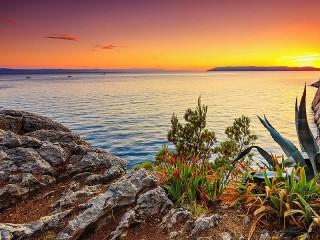 Собирать пазл Закат на берегу онлайн