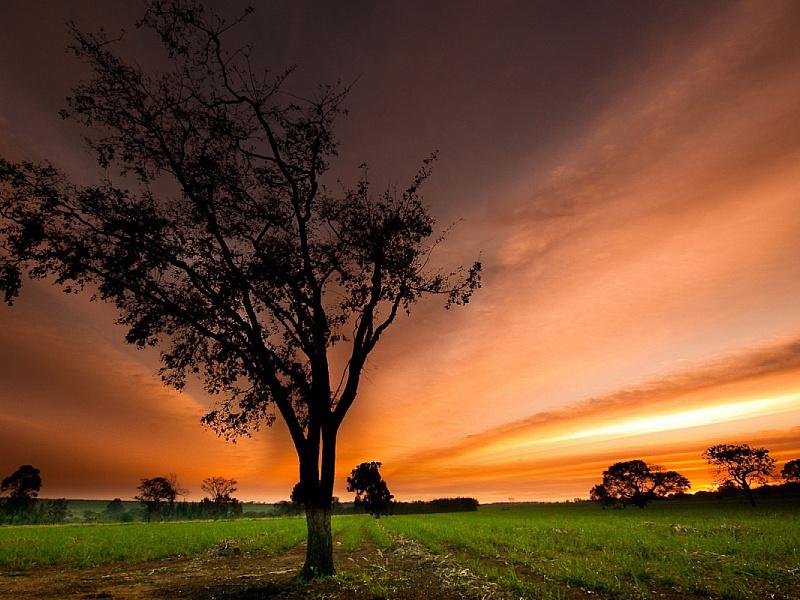 Пазл Собирать пазлы онлайн - Закат солнца