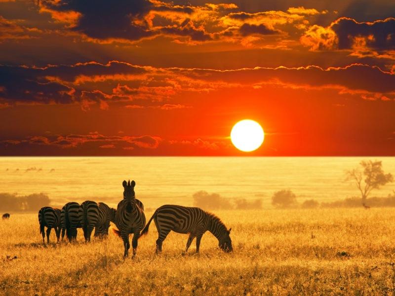 Пазл Собирать пазлы онлайн - Закат в Намибии