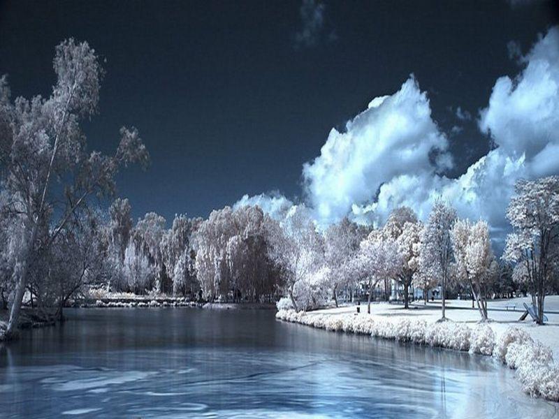 Пазл Собирать пазлы онлайн - Заметая снегом