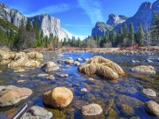 Собирать пазл Заповедник в США онлайн