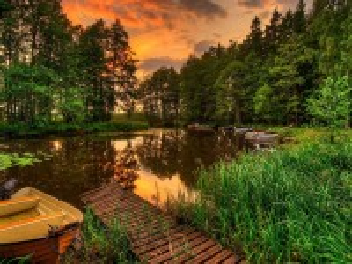 Собирать пазл Заросший пруд онлайн