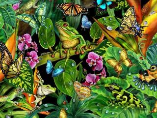 Собирать пазл Земноводные и бабочки онлайн