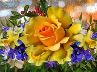 Собирать пазл Желтая роза онлайн