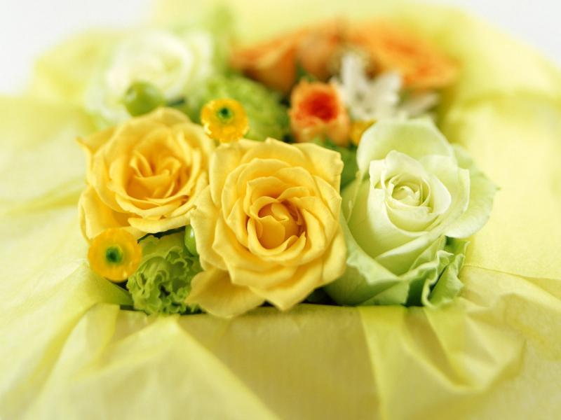 Пазл Собирать пазлы онлайн - Желтые и белые розы