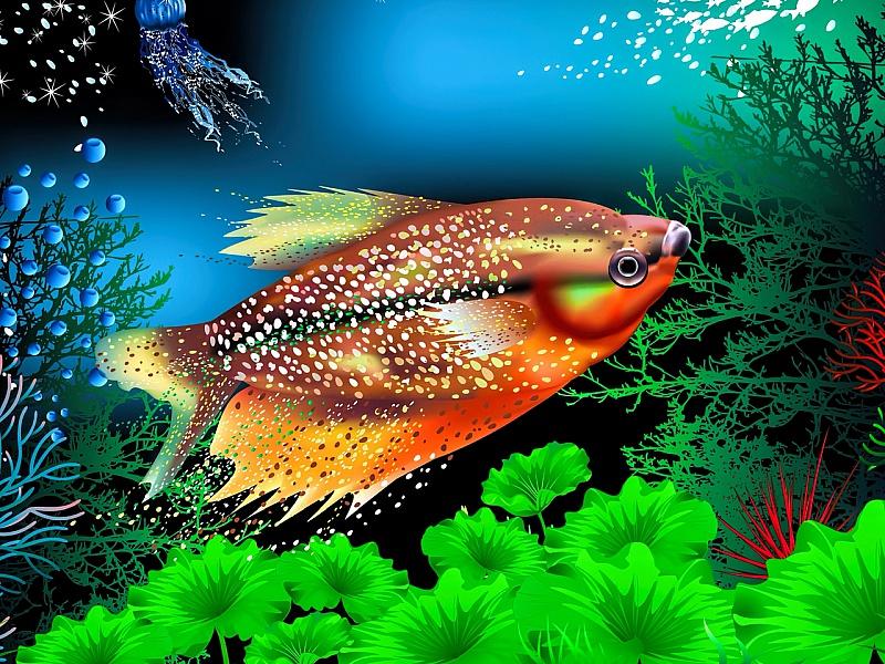 Пазл Собирать пазлы онлайн - Житель аквариума