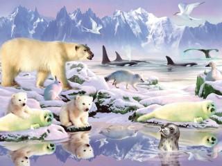 Собирать пазл Животные Арктики онлайн