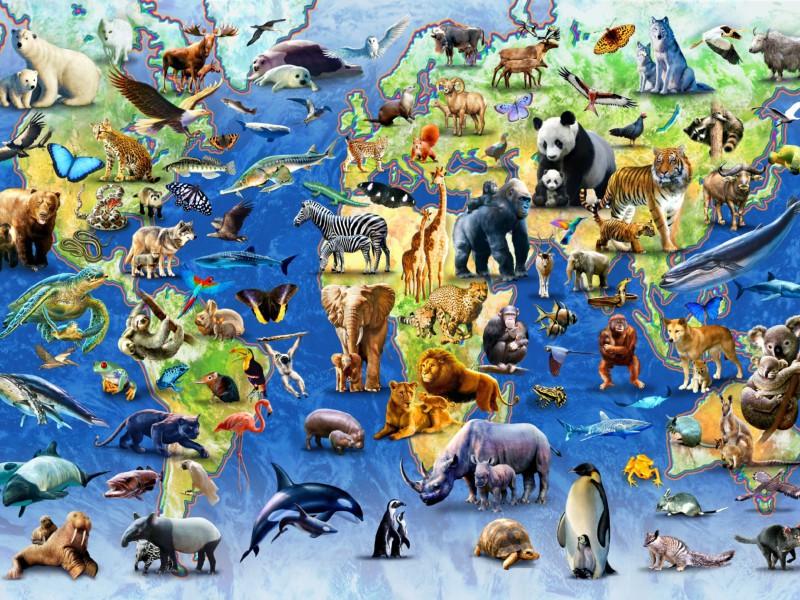 Пазл Собирать пазлы онлайн - Животные на карте