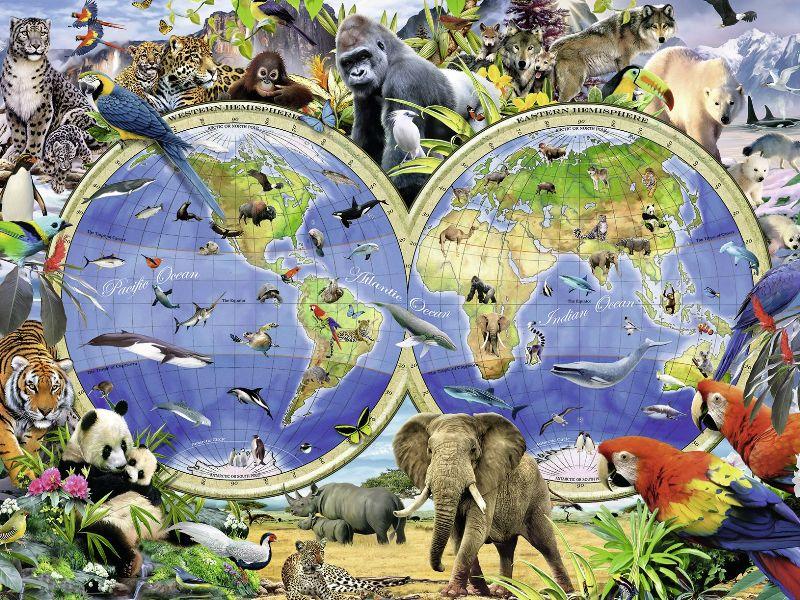 Пазл Собирать пазлы онлайн - Животный мир