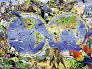 Собирать пазл Животный мир онлайн