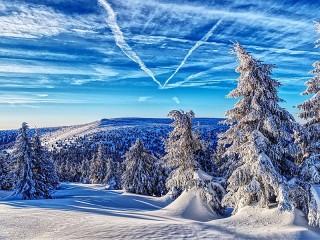 Собирать пазл Зима в Чехии онлайн