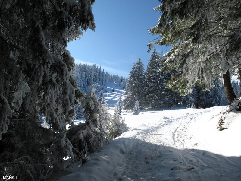 Пазл Собирать пазлы онлайн - Зимние карпаты