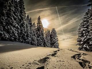 Собирать пазл Зимний бал онлайн