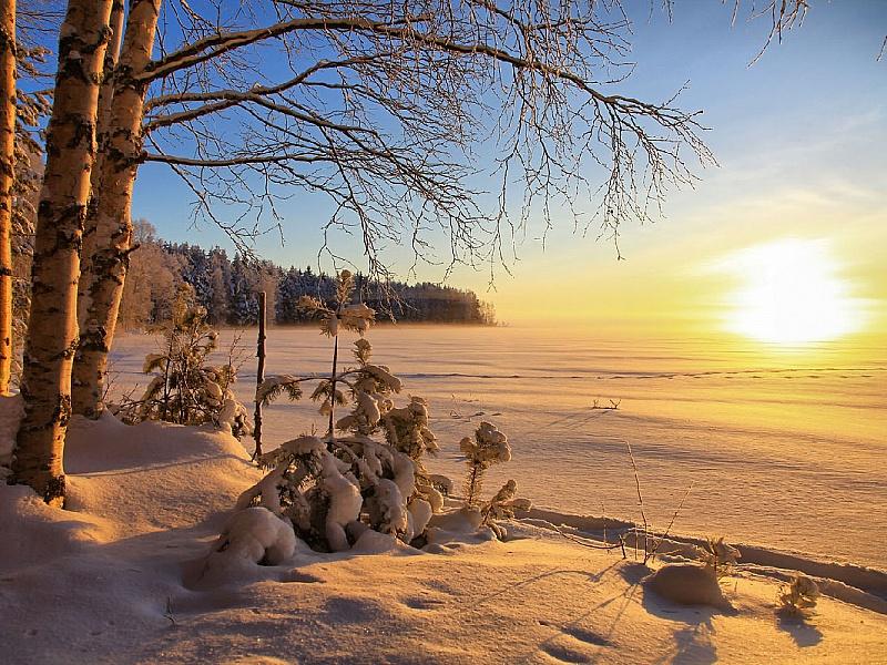 Пазл Собирать пазлы онлайн - Зимним днем