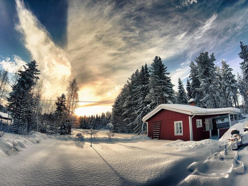 Пазл Собирать пазлы онлайн - Зимний лес