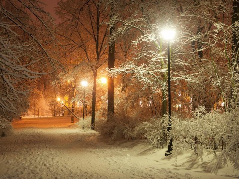 Пазл Собирать пазлы онлайн - Зимняя аллея