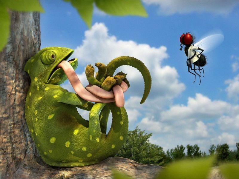 Пазл Собирать пазлы онлайн - Злой мух