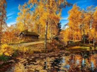 Собирать пазл Золотая осень  онлайн