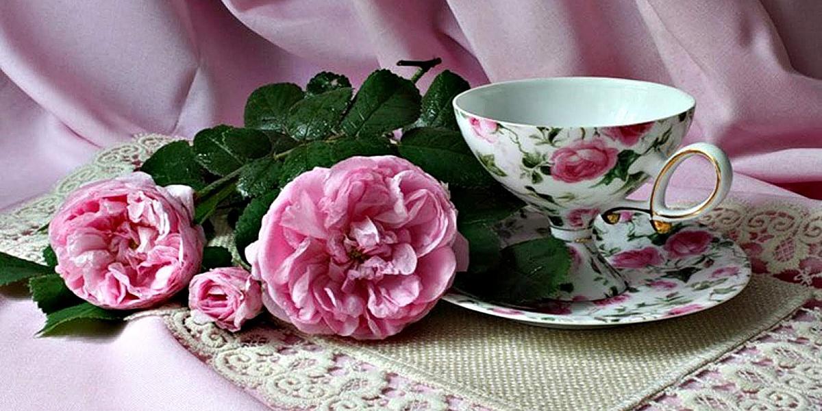 уже картинки доброе утро розы с чаем хотели вывести сша