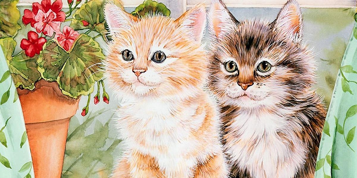 Инвалида открытка, флеш открытка с котятами