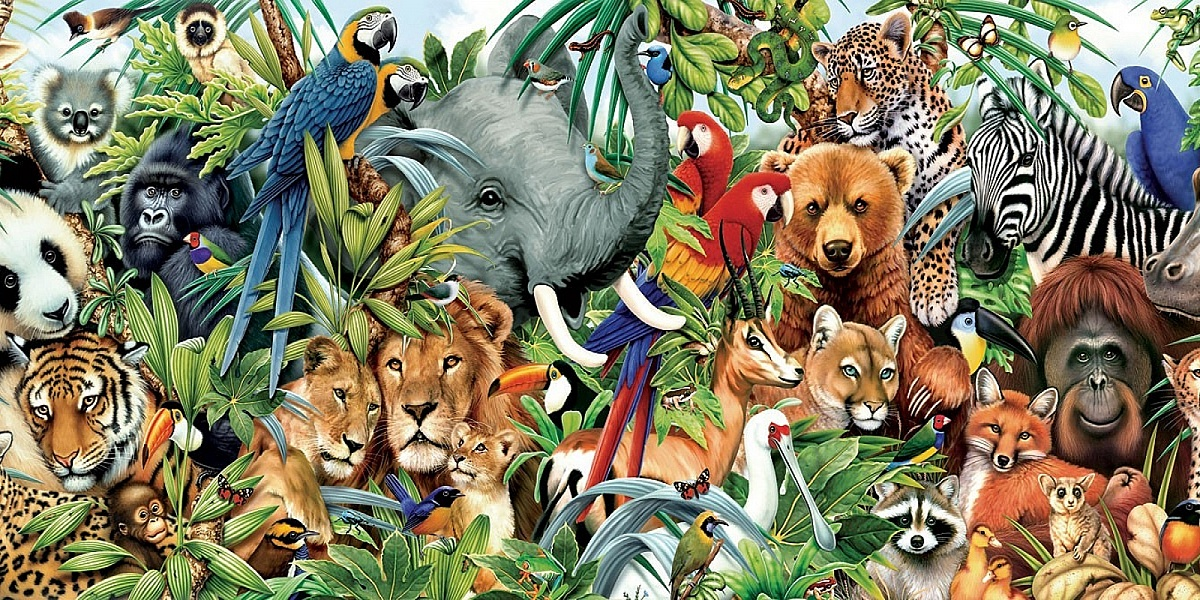 юлия картинка на которой много животных суд этот