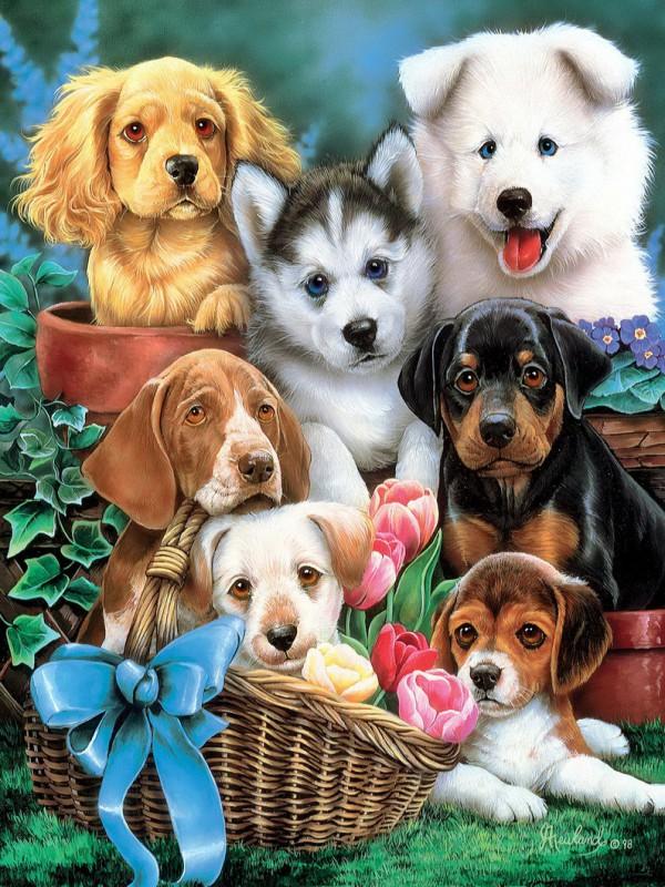 Пазл Собирать пазлы онлайн - Дружные щенки