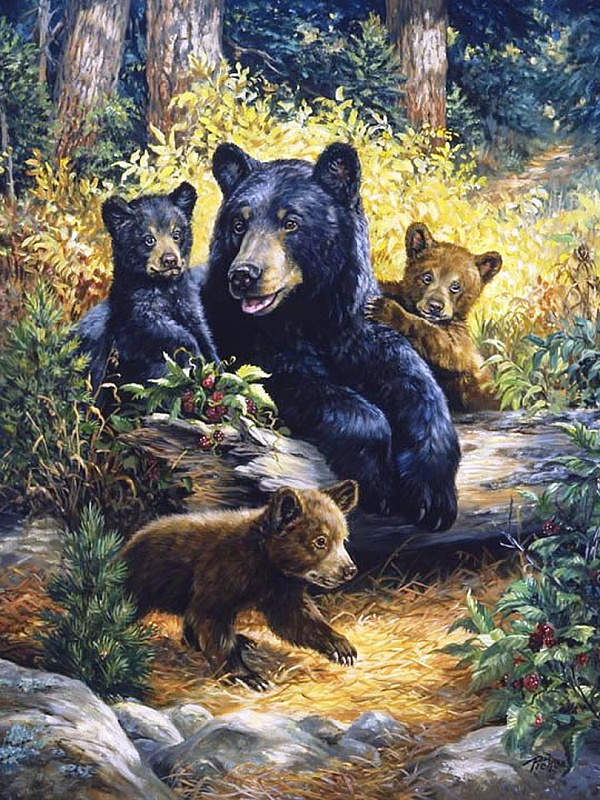 Пазл Собирать пазлы онлайн - Медведи в малиннике