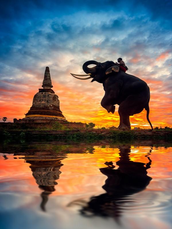 Пазл Собирать пазлы онлайн - Слон и ступа