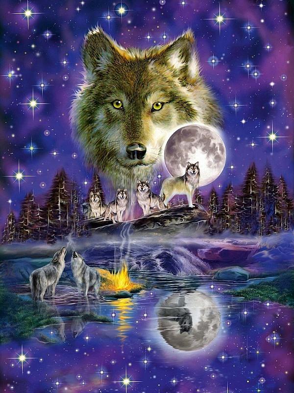 волки открытки картинки конце