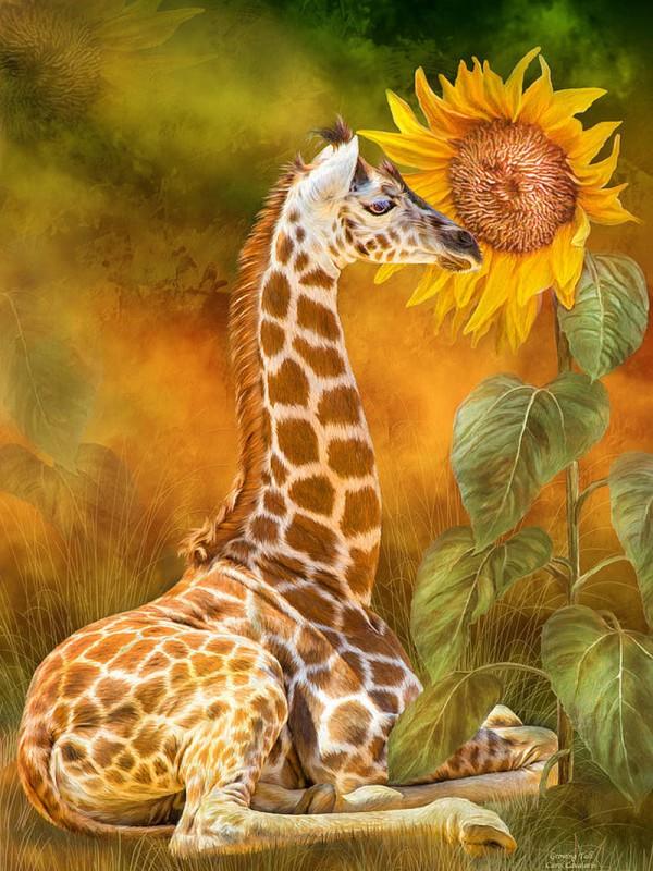 Пазл Собирать пазлы онлайн - Жирафёнок